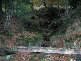 Puentes 3.jpg