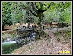 Puentes 5.jpg