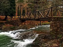 Puentes 8.jpg
